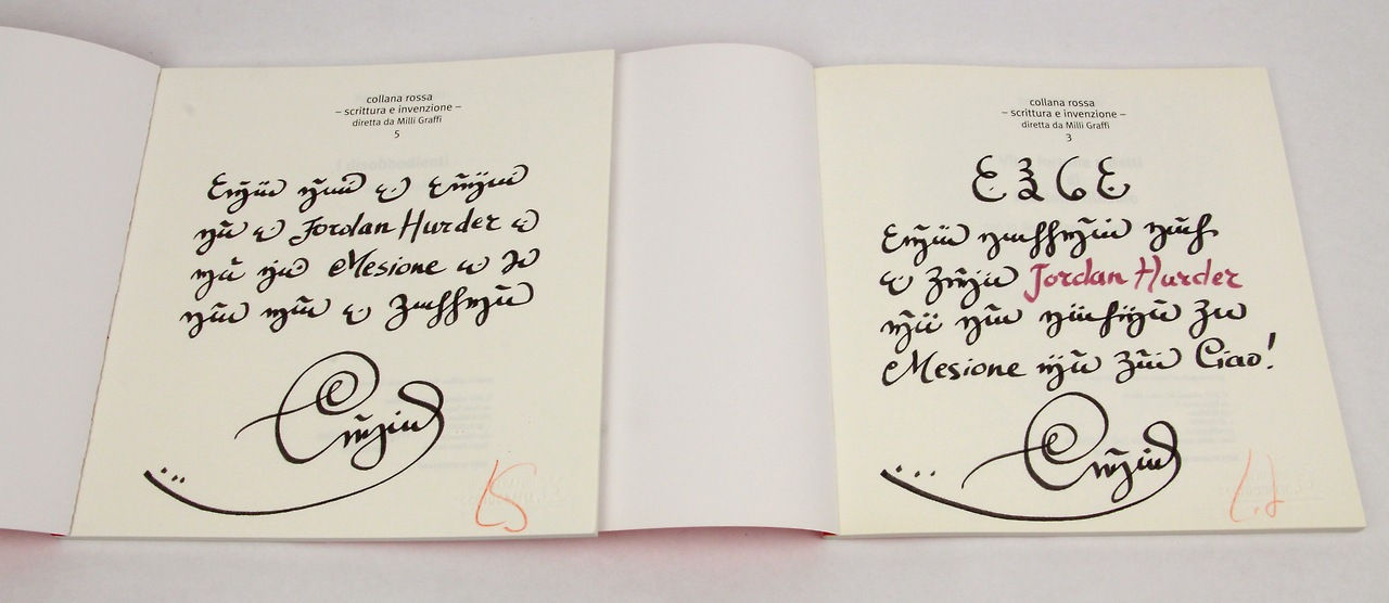 Photo: full-page inscriptions rendered in Luigi Serafini's made-up language from the Codex Seraphinianus
